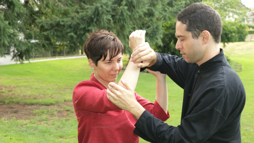 A systematic approach to the subtle qualities of push hands